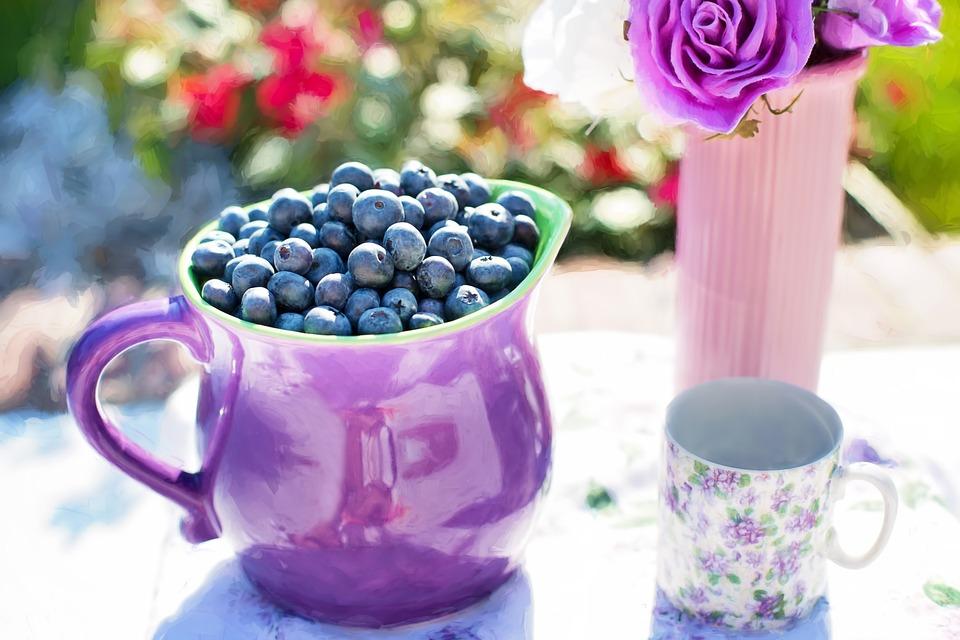 blueberries-864628_960_720.jpg