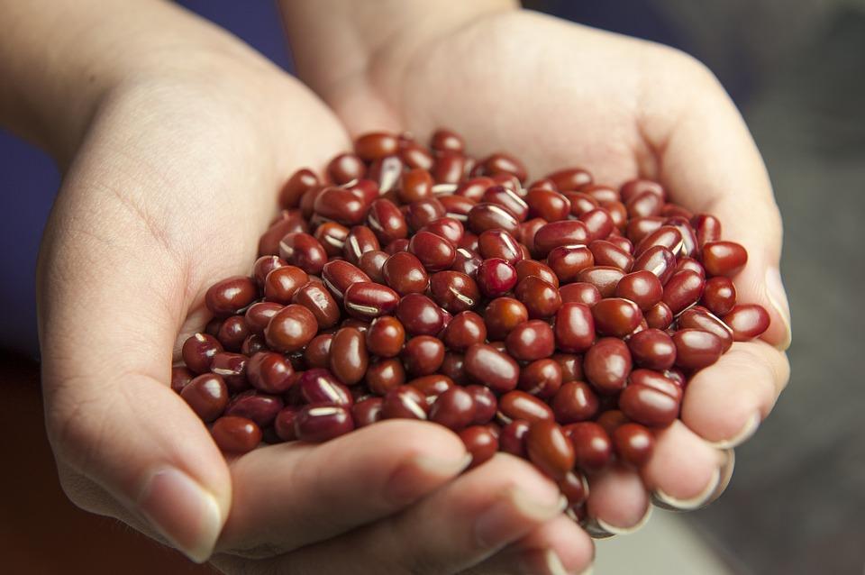red-beans-587592_960_720.jpg
