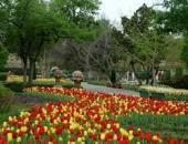 达拉斯植物园
