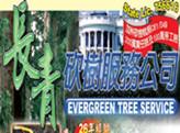長青砍樹服務公司