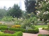 亚特兰大植物园