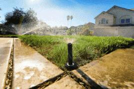Double Eagle Sprinkler