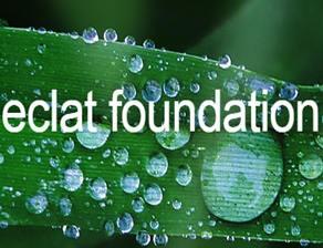 ECALT基金会