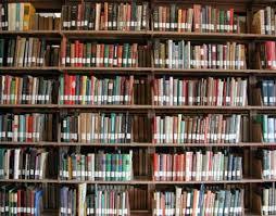 Maybelle Burnette Library(Van Dyke Ave)