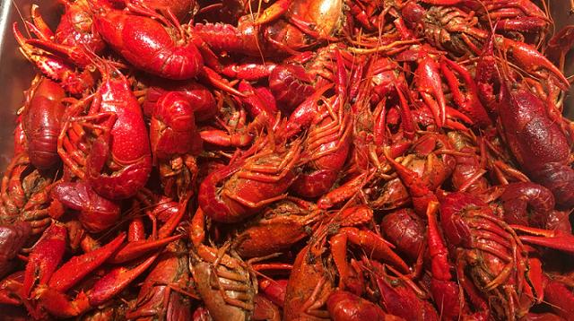 美味香辣小龙虾只需$6.99/lb!