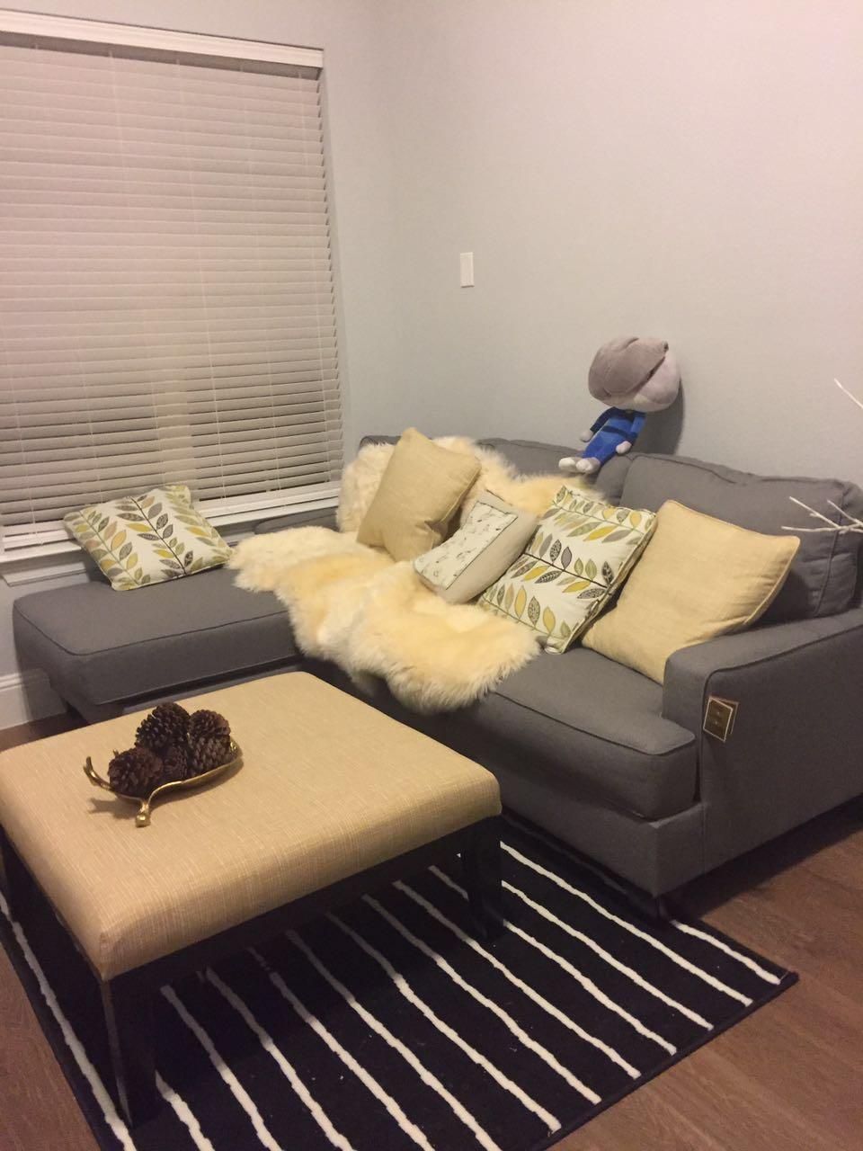 Plano新房分租, 主卧大小,拎包入住$600